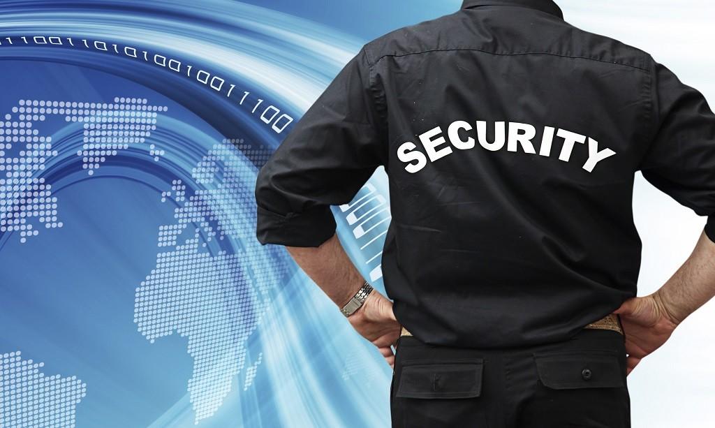 ochroniarz na tle danych internetowych